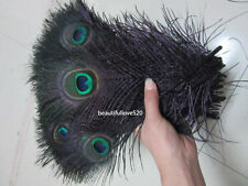 10-500pcs Beautiful Black Natural Peacock Feathers Sword 25-35 cm//10-14 inches