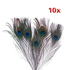 10Pcs x Natural Peacock Tail Feathers-Natuatal Color