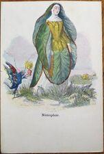 Grandville/Artist-Signed 1900 Flower/Plant Person Postcard: Nenuphar