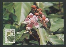 Onu Viena Mk 1990 flora Heil plantas plantas medicinales Carte maximum card mc d5175