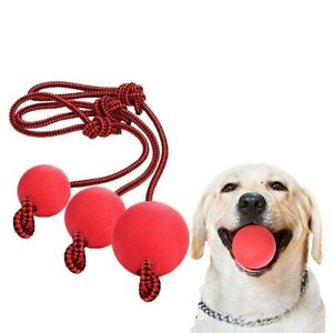 Indestructible Dog Ball Training Toy Pet Chew Toys Solid Rubber Balls with Rope