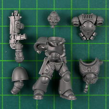 Primaris Space Marine del intercessor C DARK Impero Warhammer 40k 10081 Bitz