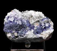 Large Particles Natural Blue Cube Fluorite Crysal Cluster Mineral Specimen
