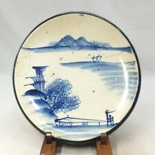 D490: Japanese biggish plate of really old SETO blue-and-white porcelain ware