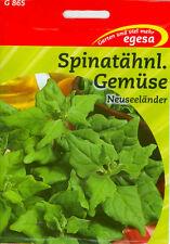 Spinat Sommerspinat Neuseeländer Spinatähnliches Gemüse ca.35 Korn Tetragonia