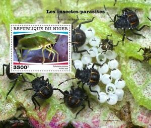 Niger Insects Stamps 2020 MNH Parasites Green Shield Bug Shieldbugs 1v S/S