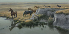 """Mustang Country -Horses - By Robert Bateman LTD Giclee on Canvas size  20"""" x 40"""""""