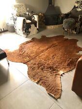Large Cow Skin - Hide Rug In Rich tan.