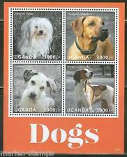 Uganda 2013 Dogs Sheet Coton De Tulcar Rhodesian Ridgeback Coonhound Mint Nh