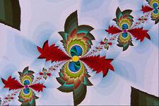 473009 Bird Of Paradise A4 Photo Texture Print