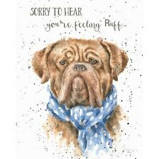 Wrendale Designs get well Greeting Card Dog sorry to hear feeling ruff rough