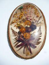 ♦ Grand Cadre Ovale Verre Mineral  Bombé Fleurs Séchées Vintage 37/22 cm