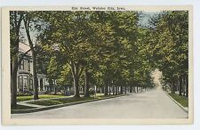 View of Elm Street WEBSTER CITY IA Vintage Hamilton County Iowa Postcard