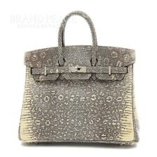 Hermes Birkin 25 Lizard Ombre Silver Fittings D-Engraved Brand Pieces _16123