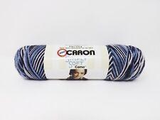 Caron Simply Soft Yarn Skein - New