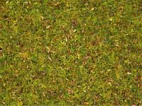 Noch 08330 (100g/€12,95)-Streugras Blumenwiese, 2,5mm 20g, HO Standard-Länge
