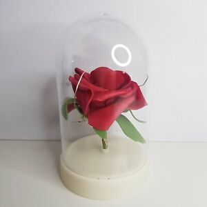 Mothers Day Light Up Rose Jar Cloche Gift for Her like Beauty n Beast For Her