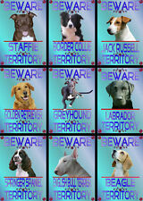 Beware Of The Dog Signs Territory Various Breeds Set B