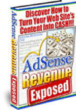 Make Your Website's Content Into ADSENSE Revenue - Get More Income Now (CD-ROM)