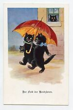 Chats noirs . Black cats . Katze . Gato . 猫