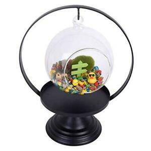 Glass Vase Plant Terrarium with Black Metal Tray Stand,Ornament Display