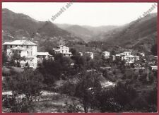 GENOVA TRIBOGNA 05 Frazione CASSANESI Cartolina FOTOGRAFICA viaggiata 1969