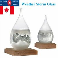 Weather Predicting Storm Glass Medium and Small Decorative Weather Forecaster CA