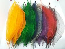 500x Multi-Color Natural Skeleton Leaves Rubber Tree Scrapbook Craft Wedding
