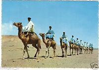 Der Marokko Malerische - Spähtrupp Im Desert (G6491)