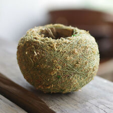 Natural Moss Ball BONSAI KOKEDAMA Green Sphagnum Moss Substrate Home Decoration