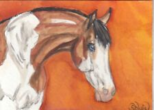 ACEO original Watercolor Art Card Horse Bay Splash white pinto yearling Mare