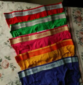NEW DESIGN  CALVIN KLEIN GAY PRIDE BRIEF     CHOICE OF COLOURS  LARGE
