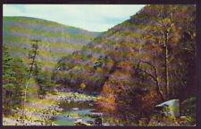 VIRGINIA VA Goshen Pass Vintage Postcard PC