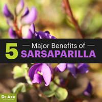 Sarsaparilla Capsules Root Powder (Smilax ornata) Tu Fu Ling (Organic) Dr Sebi