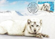 Rumania 2020 - Polar animals - White fox (maxicard)