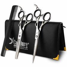 Hairdressing Thinning Barber Cutting Razor Scissors Salon Shears 6''