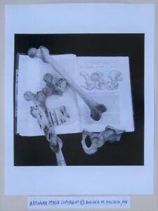 Macabre Photographer © Andrea Baldeck Gelatin Silver Print Mutter Museum Bones
