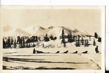 breaking trail in alaska,dogsled theme real photo postcard