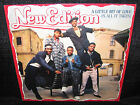 NEW EDITION A Little Bit Of Love (1986 U.S. 4 Track Picture Cover Promo 12inch)