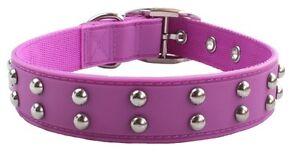 Gummi Pet Stud Dog Collar - Purple