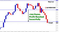 BECOME A PRO TRADER - Expert Forex Trading Signals - Lifetime Membership