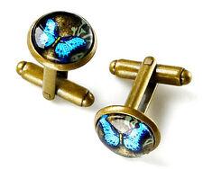 Blue Morpho Butterfly Cufflinks