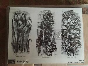 Stampin' Up EARLY SPRING Set of 3 RARE Stamps 2003 Flowers Tulips Lily Gladiolas