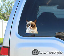 Grumpy cat sticker decal breed meme family stick toy video american car laptop