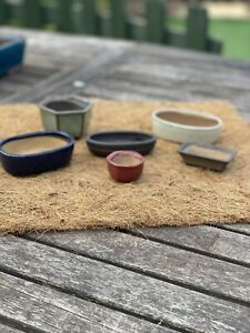 Bonsai Pot Job Lot Mame Bonsai  Set of Pots by Walsall Ceramics/ Japan Set of 6