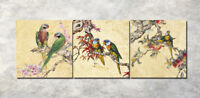 "Branch parrots Art Printed 16x16"" Painting on Canvas 3Parts Home Wall Decor 1144"