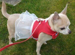 DOG PUPPY DRESS HARNESS XXS TO SMALL DOG SIZES RED PINK BLACK PURPLE BLUE