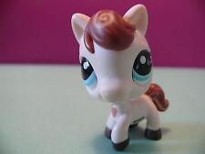 petshop cheval / horse N° 1616