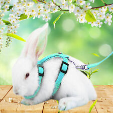 Small Animal Harness Leash Adjustable for Guinea Pig Hamster Rabbit Squirrel