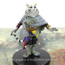 Baldur's Gate Descent into Avernus ~ Mahadi #24 Icons Realm D&D miniature cat